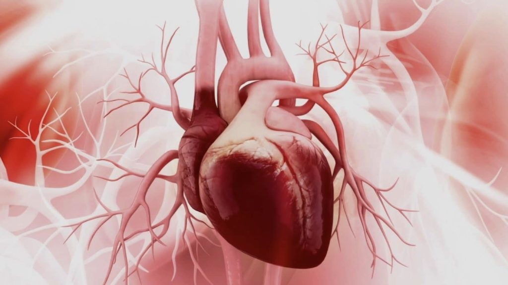 Everything You Need To Know About Congenital Heart Defects