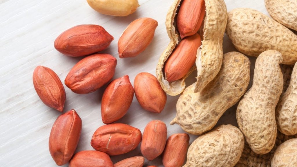 Everything You Need to Know About Essential Amino Acids
