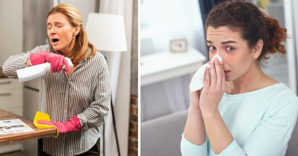 What Causes An Allergic Reaction?