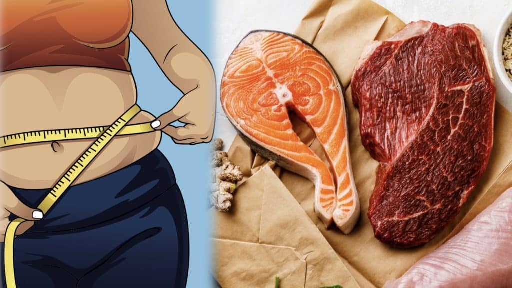 7 High Protein Foods to Eat Every Day