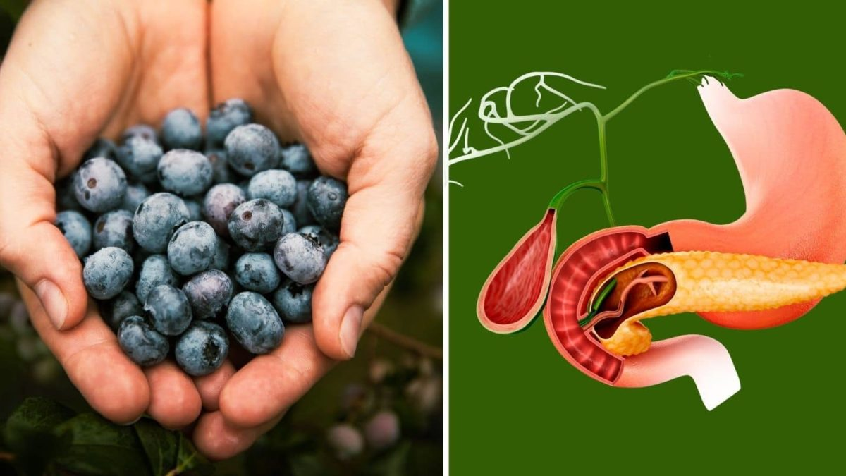 13 Foods That Will Make Your Pancreas Work Better