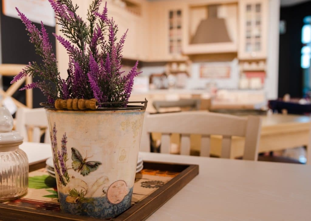 How Can You Care For Your Lavender Plant At Home