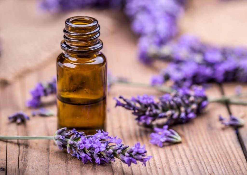 Lavender Oil For Fungal Scalp Infection