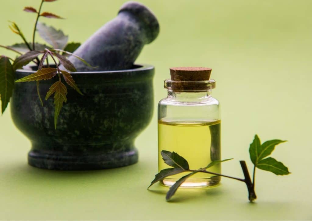 Neem Oil For Fungal Scalp Infection