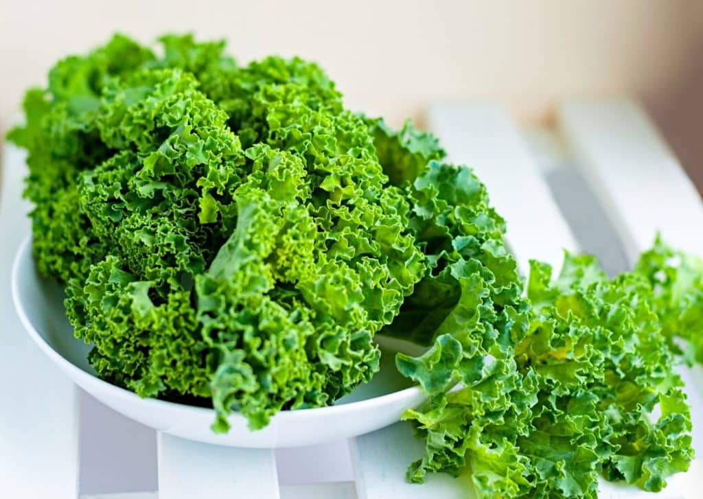 Reasons To Start Adding Kale To Your Diet