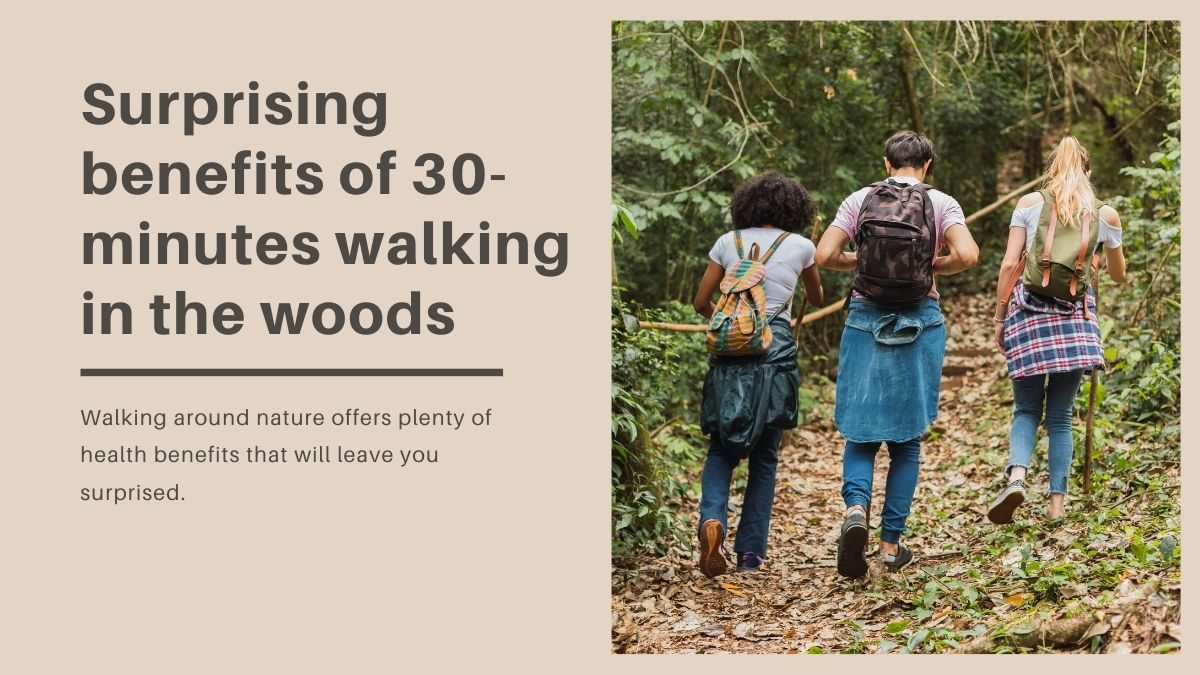30-minutes walking in the woods