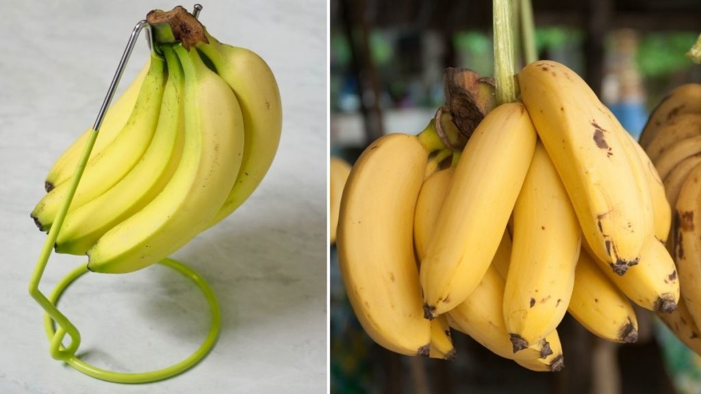 keep bananas from spoiling too early