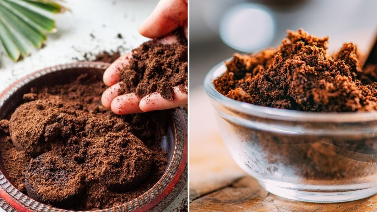 How to recycle your leftover coffee grounds